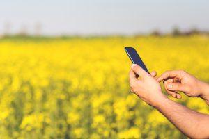 Pandemia transformará áreas do agro e acelerará digitalização de produtores (Foto: Pxhere Creative Commons)