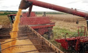 Axial-Flow na colheita de soja (Foto: Agência Brasil)