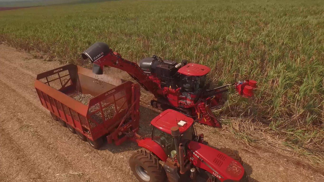 Transbordo TMA em colheita com equipamentos Case IH